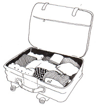 t_travel-luggage2[1]